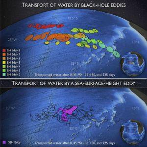 Les images satellites  montrant le déplacement des vortex dans l'Atlantique-Sud.