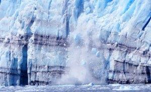 Les banquises  polaires fondent à vue d'œil.