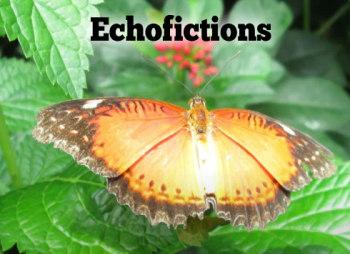 Acheter maintenant: Echofictions