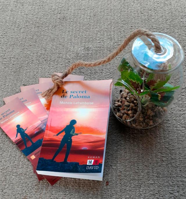 Un livre et une plante en pot