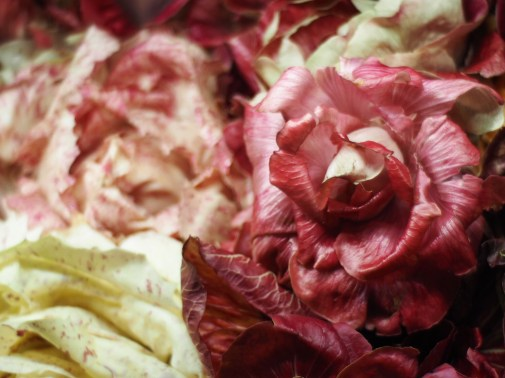 Heirloom Italian Radicchio - Eataly, Boston