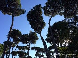 Azzedine-Alaïa-Roma-Michele-Moricci-#1