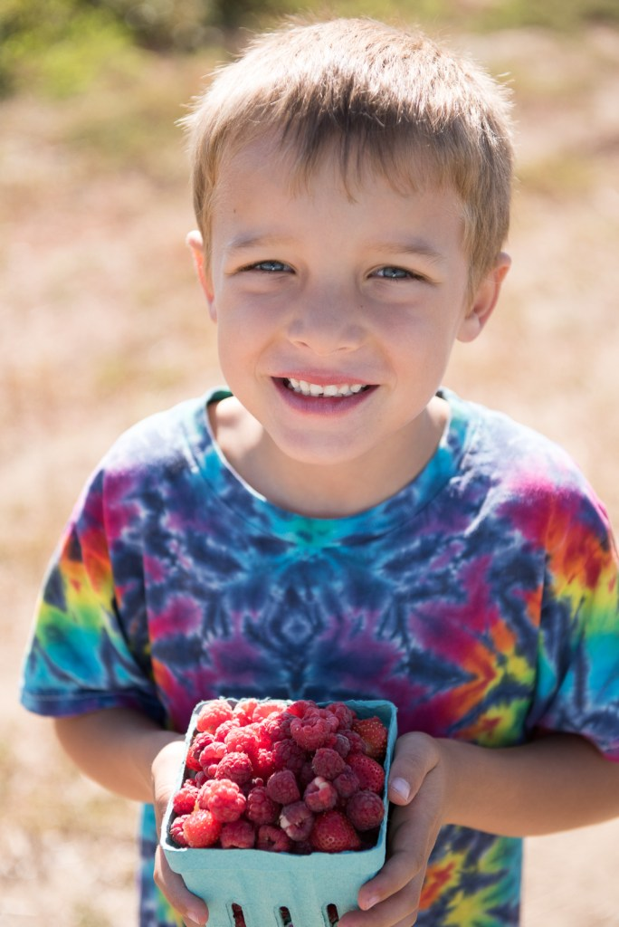 Fun with Kids: Picking Raspberries
