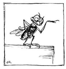 The Fly by Arthur Rackham