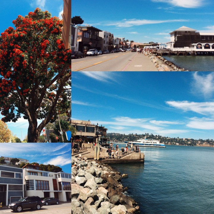 Downtown Sausalito. Had a fun time with my mom and brother!
