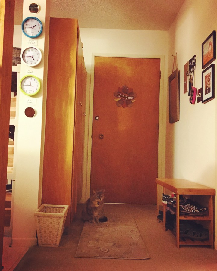 Looking back at my studio apartment's entryway. Finally have it how I want it!