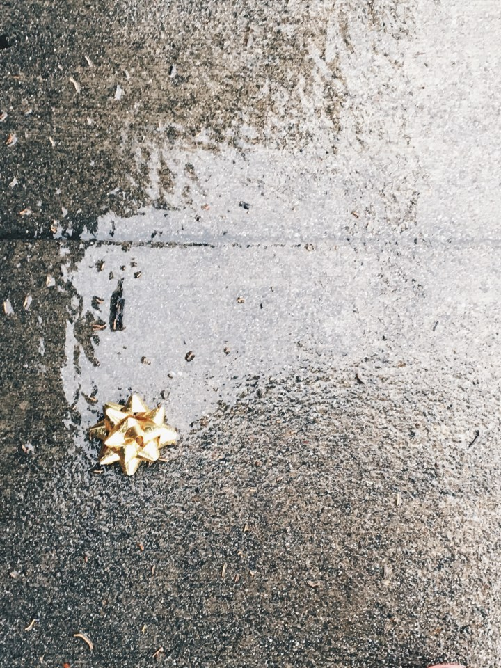 """Gift bow in a puddle on a rainy day. I """"rescued"""" this bow and took it home with me. I plan to turn it into an ornament. :)"""