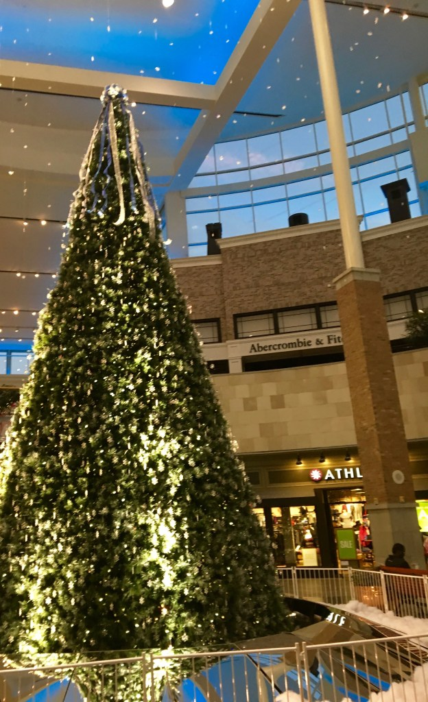 Beautiful tree during family trip to Southpoint Mall. Never seen that mall so crowded!