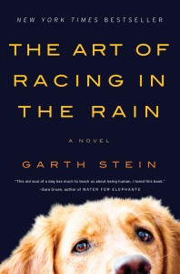 art of racing in the rain garth stein