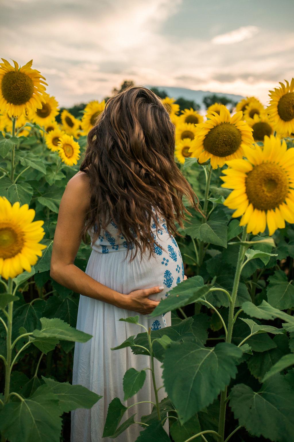 Sunflower-Maternity-Nashville-Tennessee-Field-Batey-Farms-18