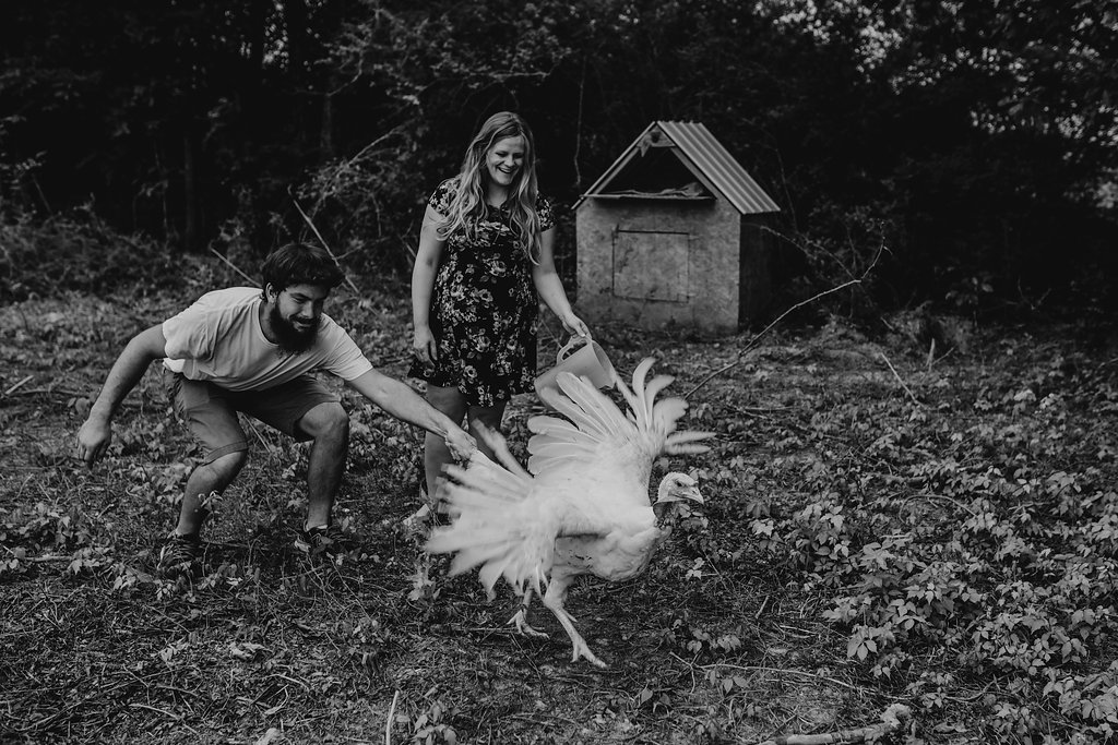 Tennessee-City-Turkey-Chickens-Farm-Country-Living-Maternity-Couples-Alpha-Gal-10
