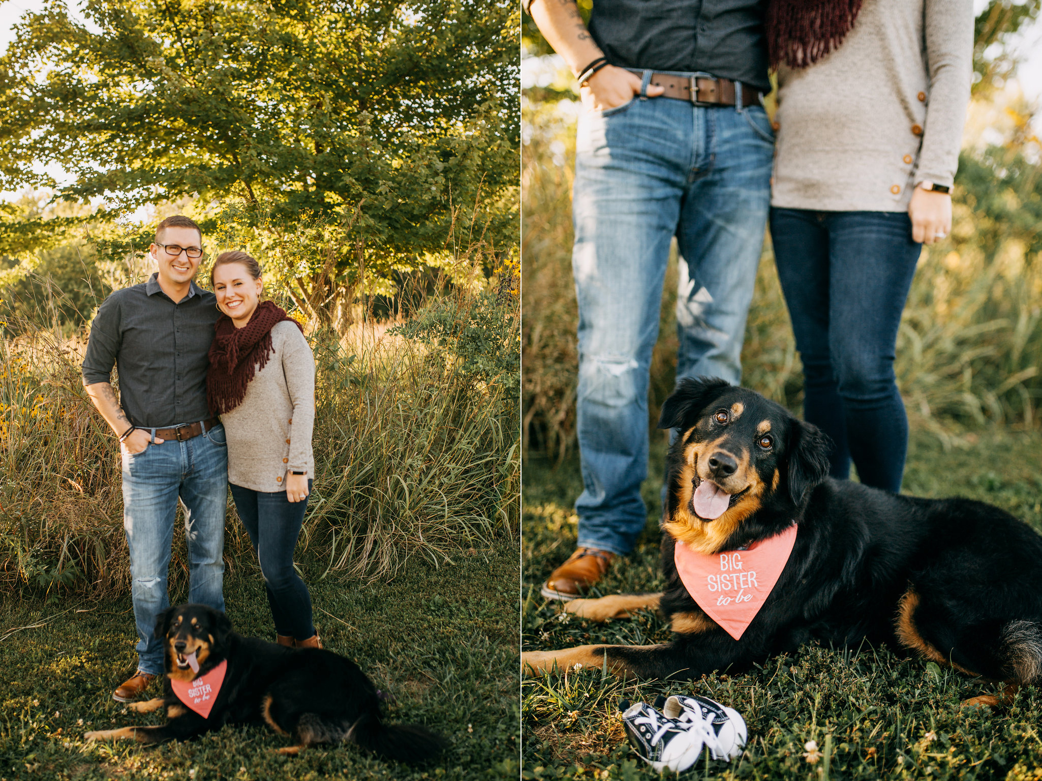 Hobbs-Pregnancy-Announcement-Baby-Pregnant-Dog-Michelle-Christine-Photography-4