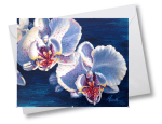 two orchids note cards