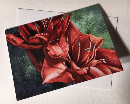 Im Alive Red Amaryllis Note Cards