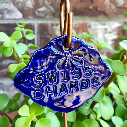 Swiss Chards