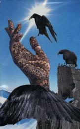 Raven (Council suit)