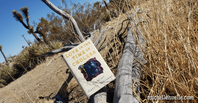 New Read: Love in the Time of Cholera book cover on desert background.