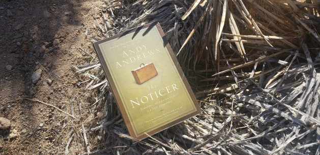 The Noticer book cover on desert background. If life is a journey, this is a sweet book to help guide your path.