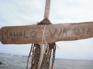 Thanks, Wailua