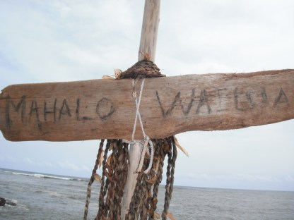 Thanks, Wailua