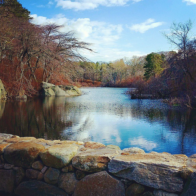 The Pond at the Mill #capecod #capecodimages #landscape #peaceful