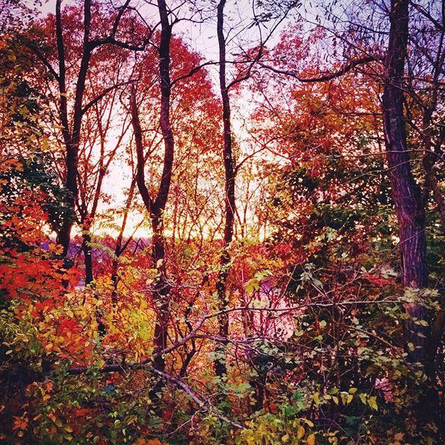 Sunset over the Hudson #natureinnyc #washingtonheightsnyc #autumninny #spectacular
