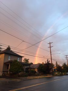 I saw this double rainbow a few months ago on my way home from an evening event. Few things describe hope better than a rainbow.