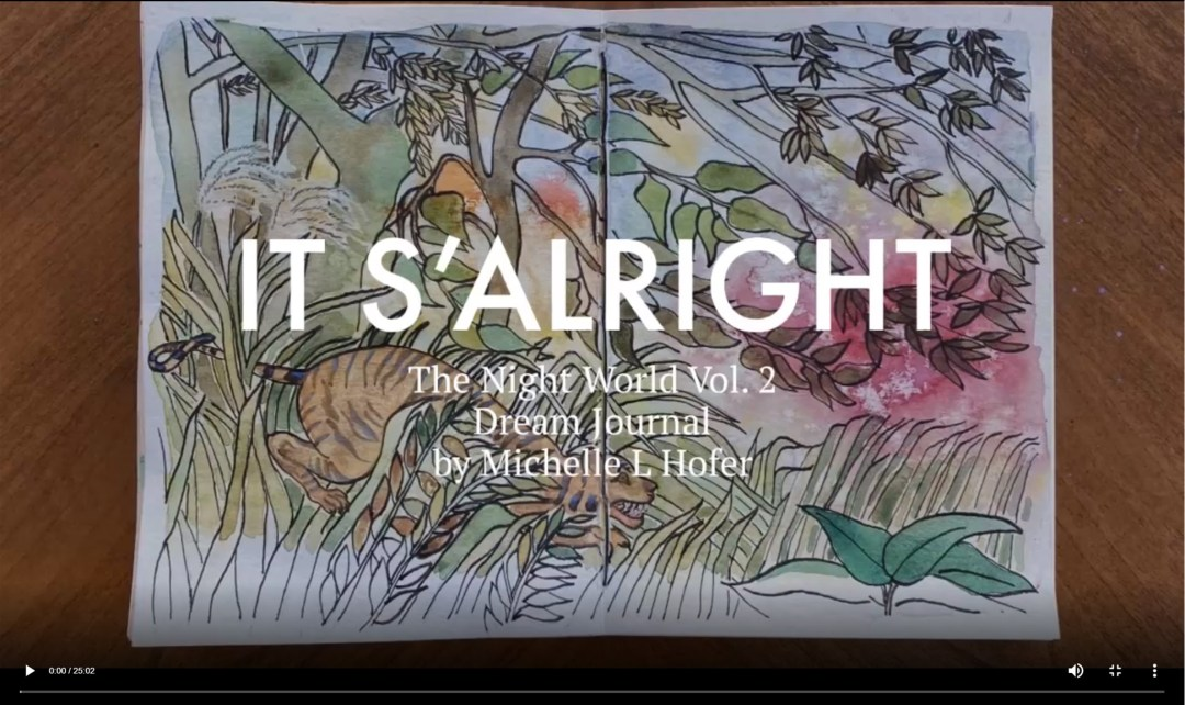 It S'alright Video Link - The Night World Vol. 2 Dream Journal by Michelle L Hofer