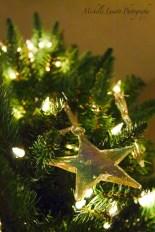 CHRISTMAS018 copy
