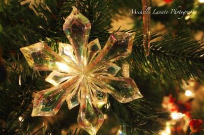 CHRISTMAS056 copy