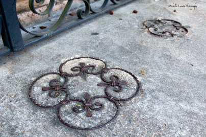 Loved this detail in the sidewalk!