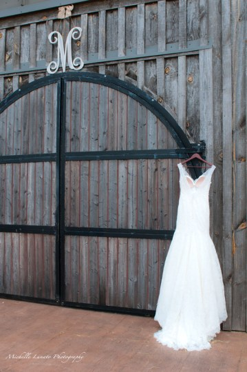 The rugged barn makes a contrast with the elegant dress.