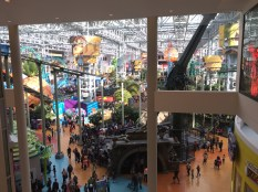 There is an amusement park inside the mall