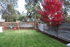 lora-ln-backyard
