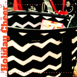 thirty-one beauty bag