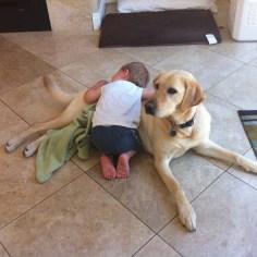 Dog Cuddles - 18 months Z