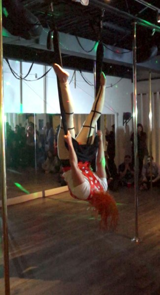Michelle Prosek Fifth Element Fly Gym Aerial Performance