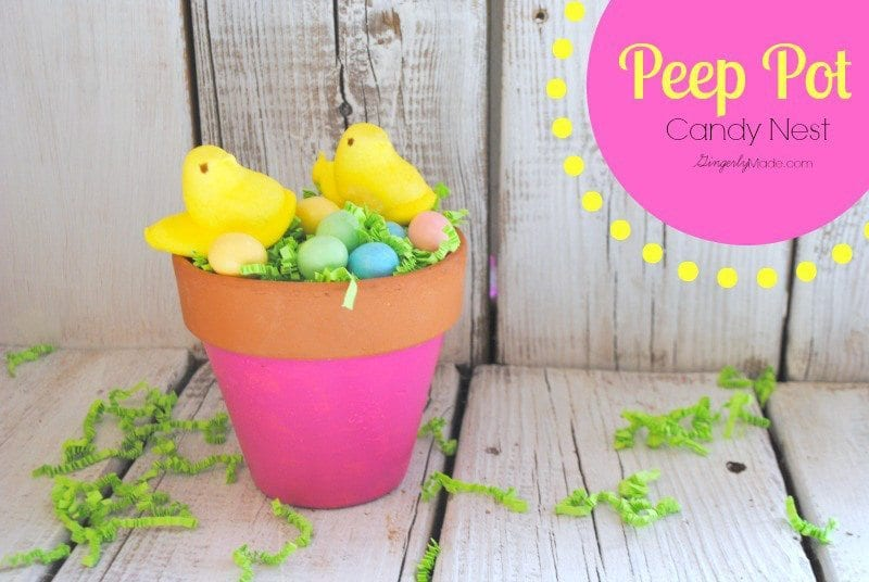 Candy Peep Nest