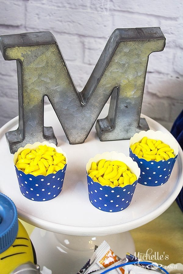 Minions Movie Party Ideas