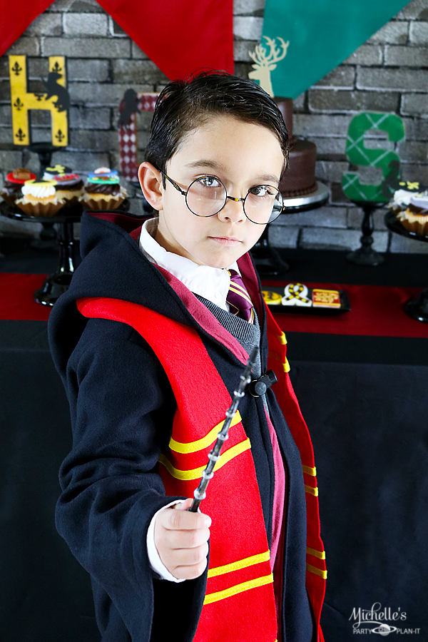 Harry Potter Dress Up Costume
