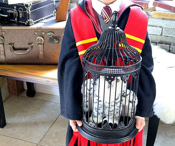 Next Stop, Hogwarts! – A Harry Potter Birthday Party