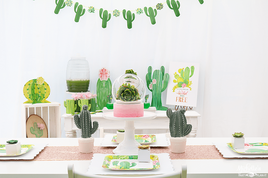 Wild and Free Cactus Party Ideas