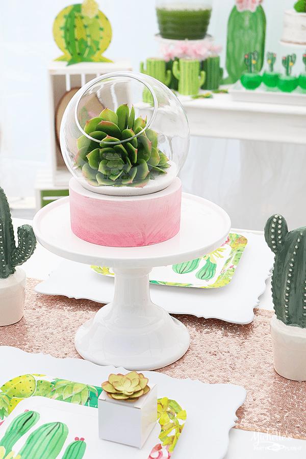 Succulent Terrarium - Cactus Party Centerpiece
