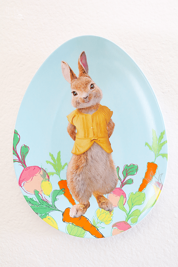 Peter Rabbit and Cost Plus World Market - Plates for backdrop