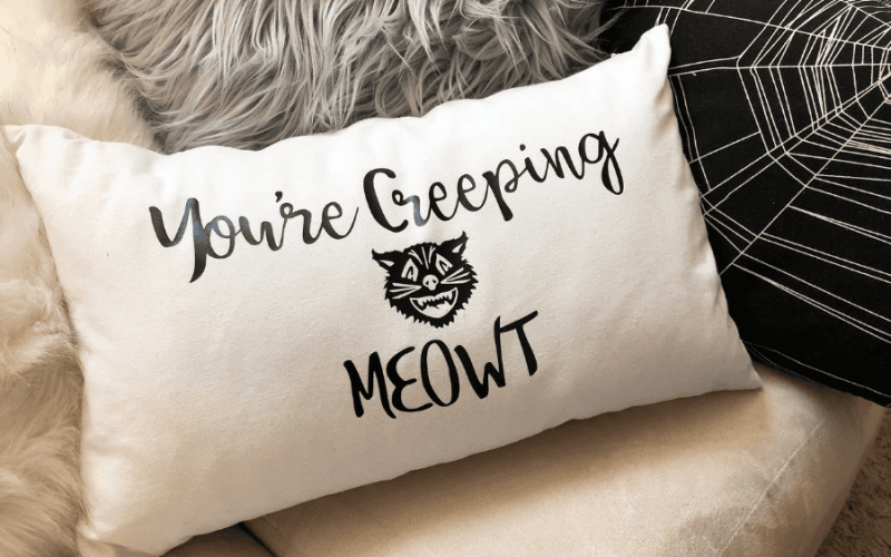 Youre creeping meowt pillow