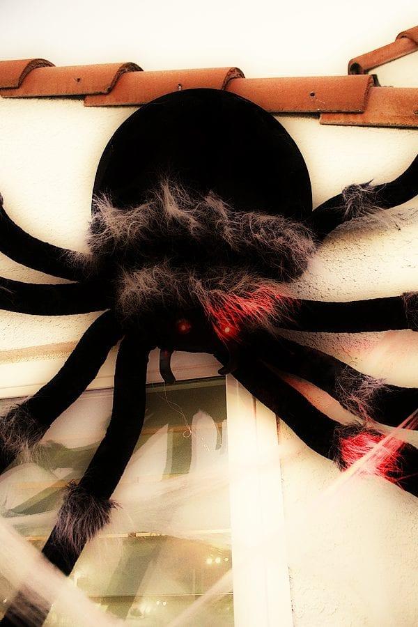 Easy spider porch decorating ideas 4