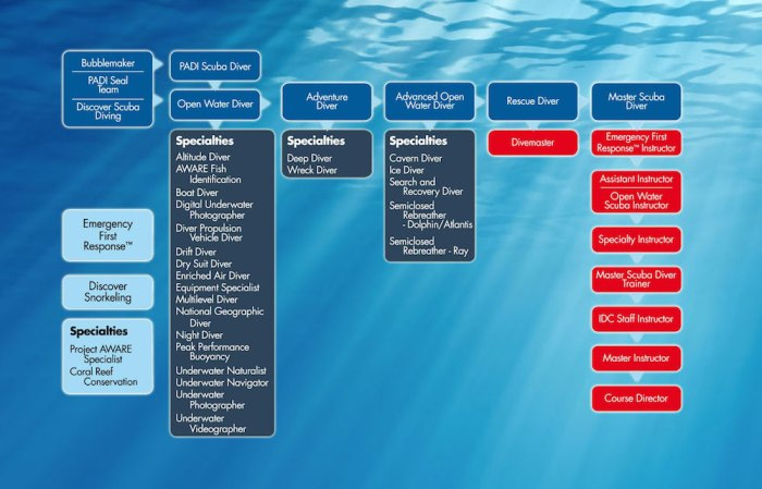 padi engagement ladder