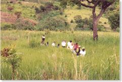 Uganda-walk