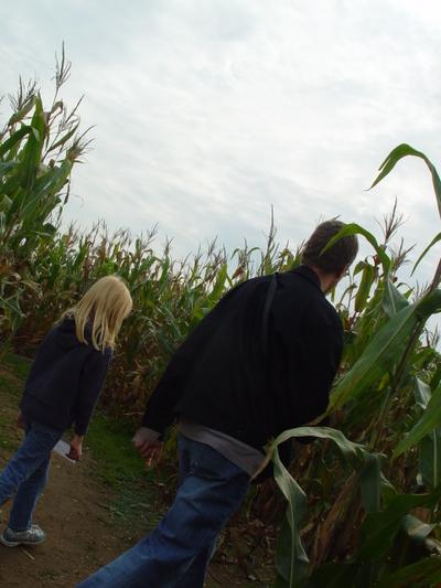 Corn_maze_029