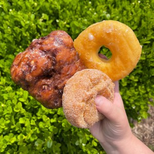 Cindy's Donuts & Ice Cream Grand Rapids Michigan